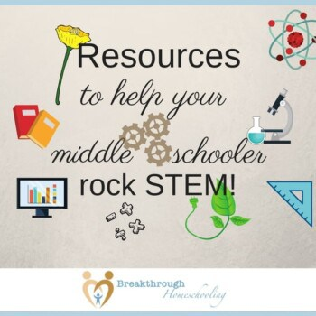 """If you were """"in a stew about STEM"""", like I was...these STEM resources are sure to help your middle schooler or older rock their STEM studies!"""