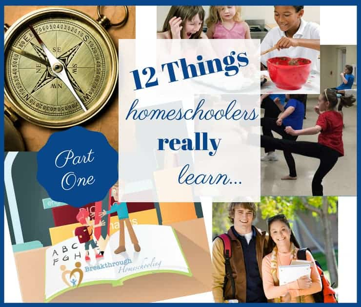 This essay reveals what homeschoolers REALLY learn...