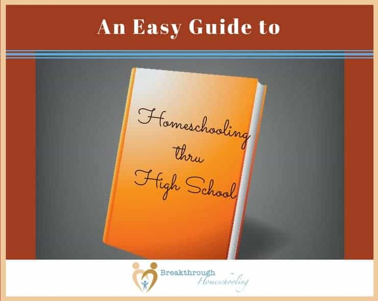 Homeschool through high school is both possible and exciting! When the time comes, or even if you find yourself in that season now, use this guide to ensure this experience is enriching for both you and your child.