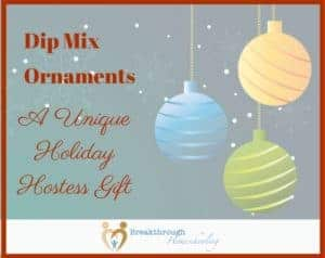 Dip Mix Ornaments are hollow, plastic ornaments that contain a mix of yummy ingredients a hostess (or you!) can use to make a quick dip for friends and family. Of course, you can add other ingredients, too... Read on, or just use your own creativity!