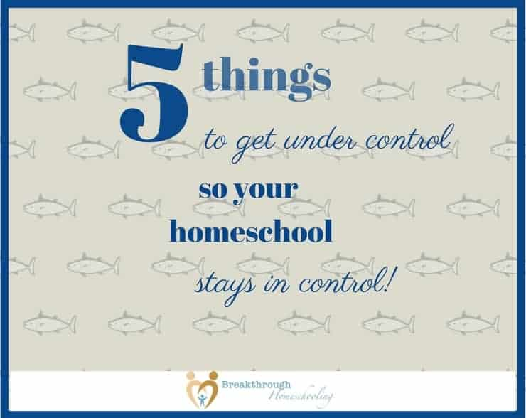 Read on for manageably-sized solutions to common challenges we all face at home that can sabotage even the most-seasoned homeschooler!