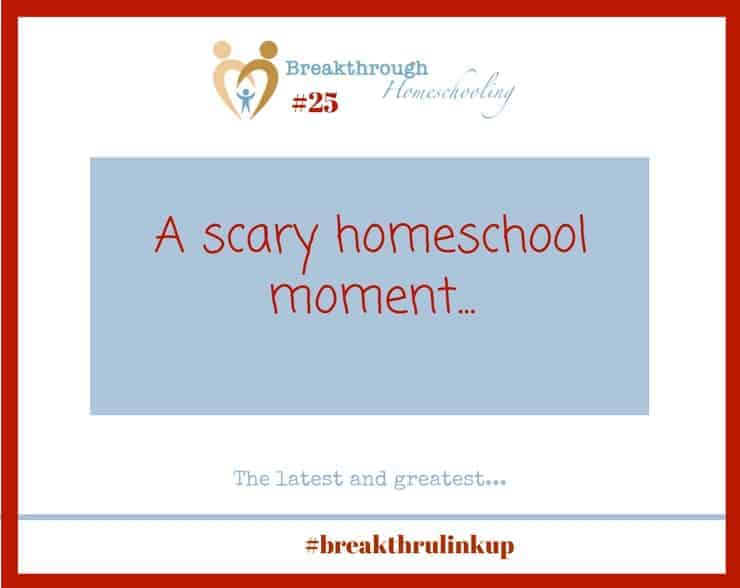 This scary homeschool moment ended up fine...I think! At any rate, I used the opportunity to craft some brand new resources for you - so you don't find yourself in the same boat!