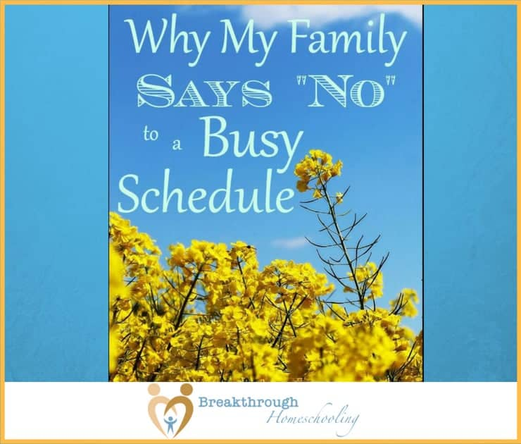 "No apologies, no excuses: we say ""No!"" to a busy homeschool life!"